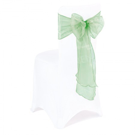 Mint Green Organza Chair Bow